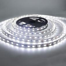LED лента BIOM SMD5050-60 12V IP20 Стандарт БЕЛАЯ