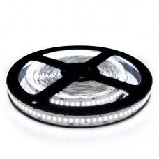 LED стрічка BIOM V2 SMD2835-240 12V IP20 Стандарт Х-БІЛА